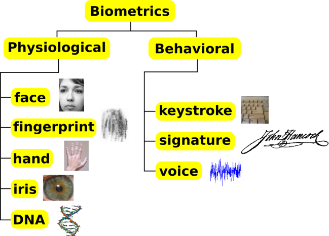 Biometrics_traits_classification[1]